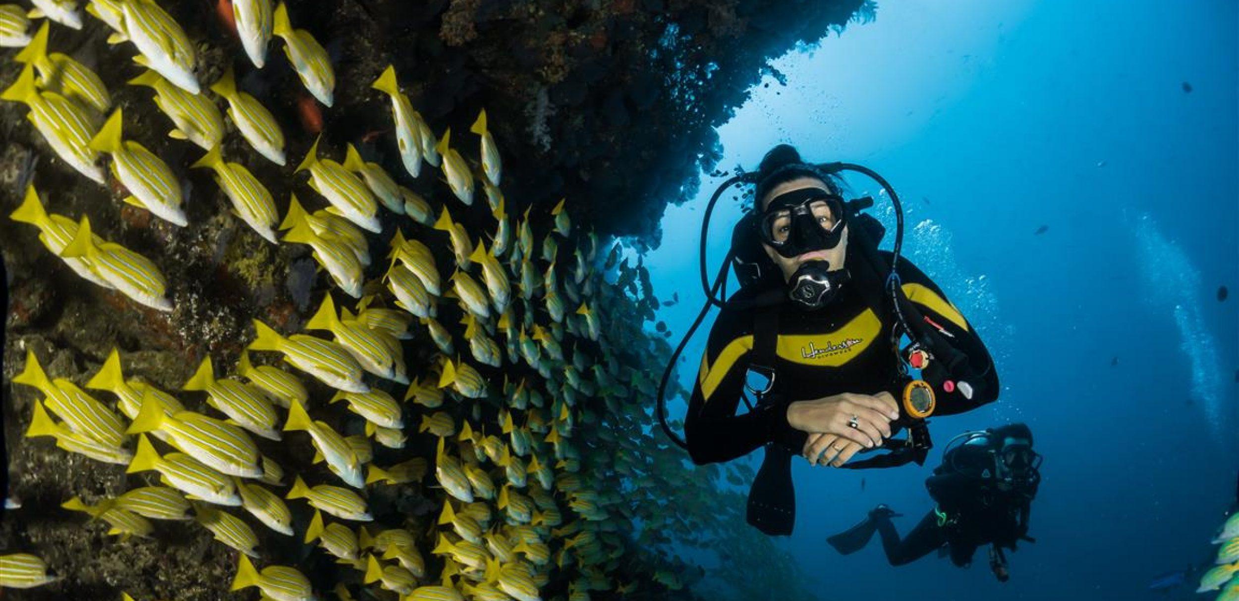 Greenfaulds Divers